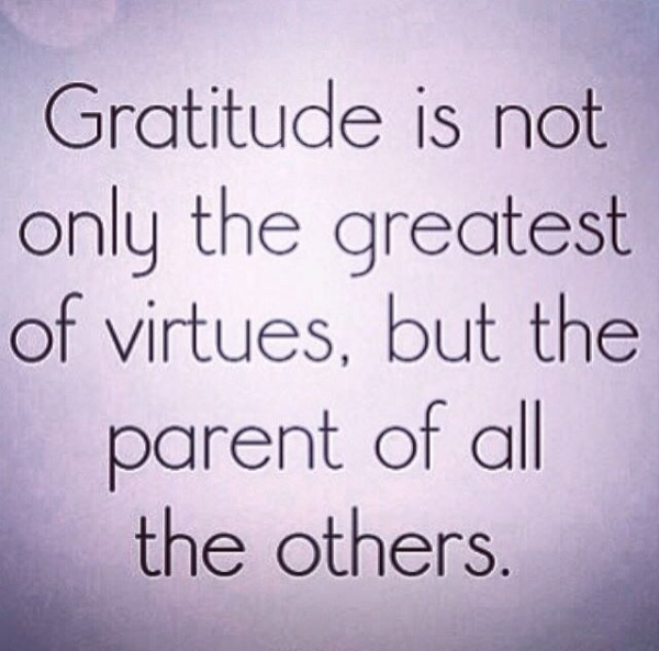 The Power of Gratitude...